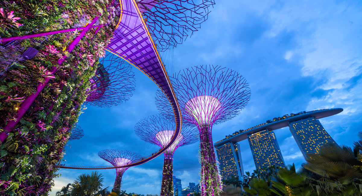 A photo of the Solar Trees and the Marina Bay Sands Hotel in Singapore